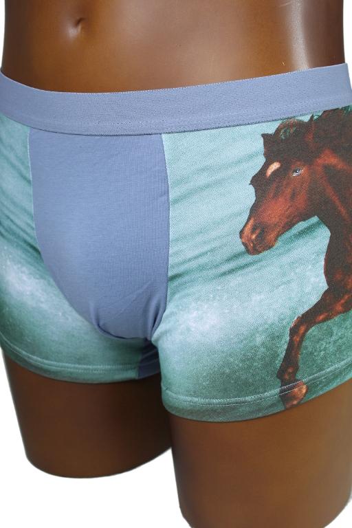Horse boxerky s motivem kůň L světle šedá